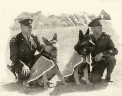 Policemen with dogs-historical